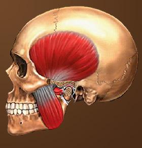 The Checklist Method Of Orthodontics