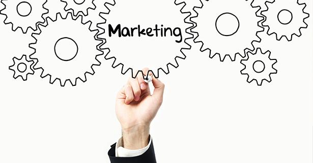 Marketing Program Overview | Roncone Orthodontics